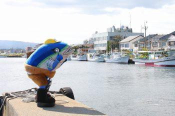 ブリカツくんがご案内。両津漁港近くの魚のうまい店