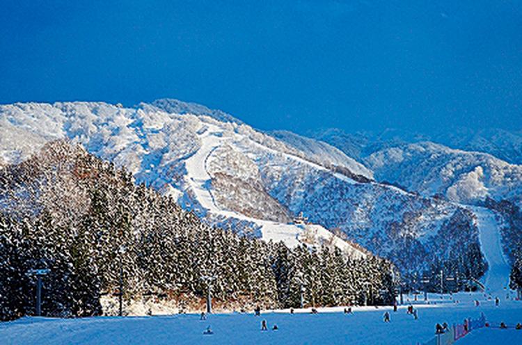 二王子岳の斜面をいかしたコースで、豊かな積雪量と雪質が自慢