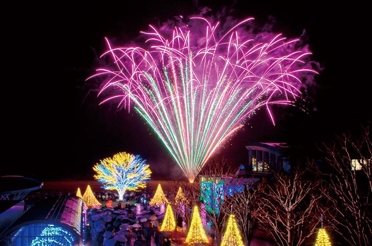 冬花火!丘陵公園が光に包まれる瞬間!