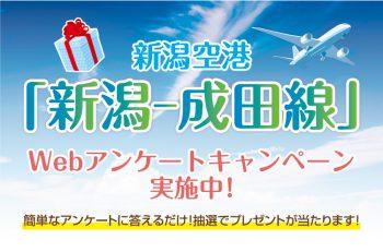 簡単なアンケート記入で、ANA旅行券などを抽選でプレゼント! 新潟空港「新潟-成田線」Webアンケートキャンペーン実施中!
