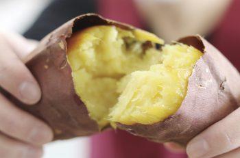 5種類の焼き芋が揃うサツマイモ専門店!