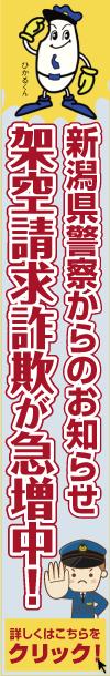 新潟空港「新潟ー成田線」