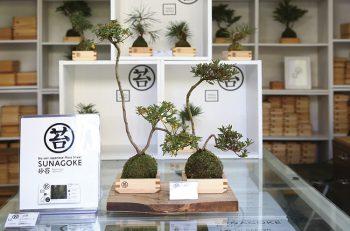 木升×苔!? 「和」の掛け合わせで生まれるモダンなアート