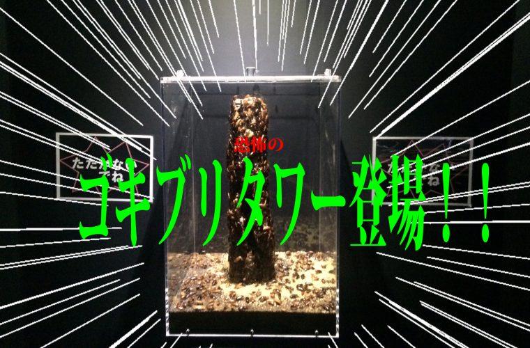 その名も『ゴキブリタワー』。この種は爆発的(!)な繁殖力と強い生命力で恐ろしいスピードで増殖するそう。