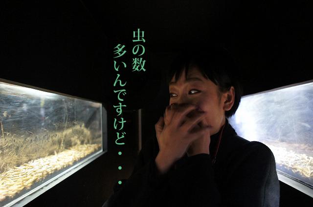 恐る恐るトンネルを通る私達。「うわぁまじか…まじか…カサカサ動く音が聞こえるんですけど!!」(高崎)