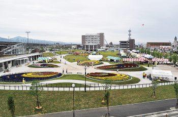 長岡市民防災公園を約2万本の花々が彩る! 初夏の風薫る会場で花と緑を楽しもう
