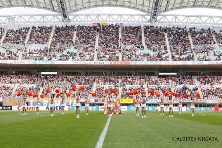サッカー、アルビレックス新潟を応援