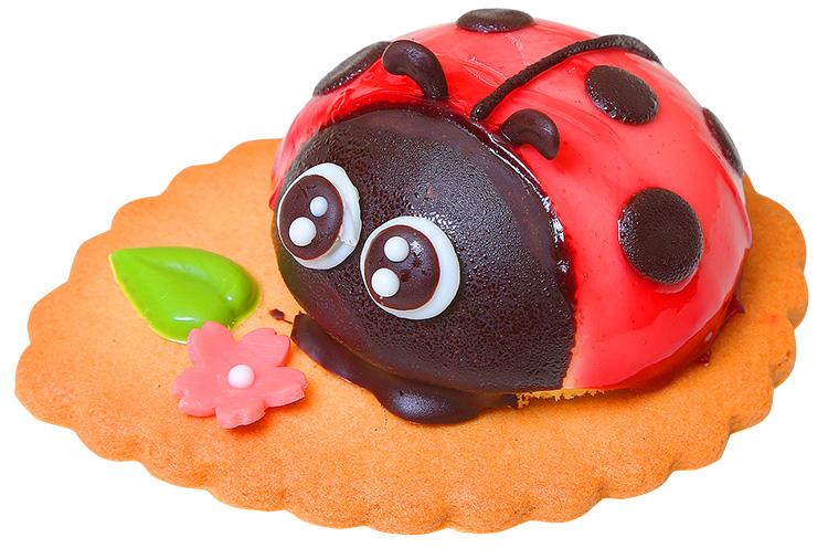 【加茂市】京家の『幸せを呼ぶてんとう虫』