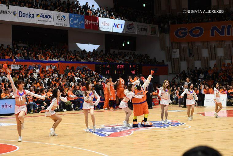プロバスケ、新潟アルビレックスBBを応援