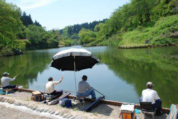 シーズン到来!! 毎年恒例のヘラブナ釣り大会、今年は7月22日(日)ですよ。