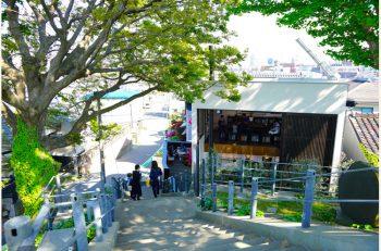 街中の自然に囲まれ、榎の木陰でくつろぐ「ランドマークカフェ」