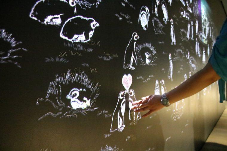 こちらのプロジェクションマッピングにふれるとペンギンたちが動きます。絵を通してペンギンの生活を紹介していますよ
