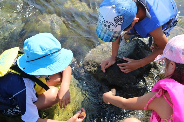 粟島の釣り遊び「穴釣り」