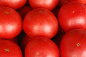 【妙高市】高原トマトを使ったオリジナルメニューを味わおう!