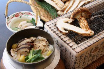 【旬の味覚を、秋の温泉宿で】旬の松茸を炭火焼や釜飯などで味わえる人気プラン!