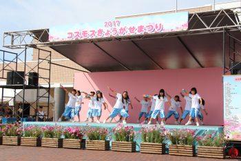 【阿賀野市】コスモスの咲くころにイベント満載。フリーマーケットもあるよ