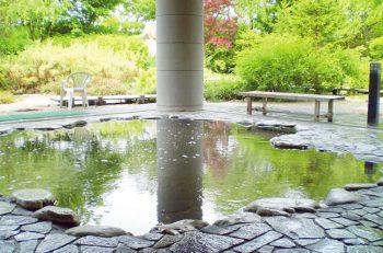 【聖籠町】ブドウ狩りと日帰り温泉がセットのお得なプラン