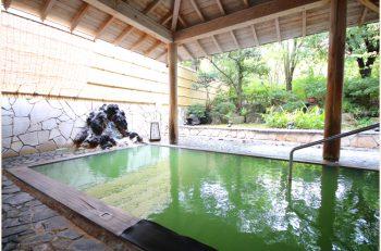 毎日70名限定!岩室の老舗旅館の温泉+ランチプランに注目|新潟市岩室温泉