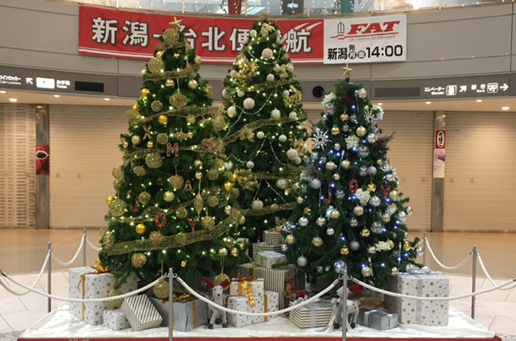 クリスマスツリーは12時35分に点灯です!!