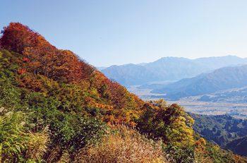 【南魚沼市】魚沼スカイラインの紅葉。見頃はいつまで?