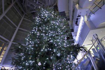 NEXT21に約8メートルの巨大クリスマスツリーが登場!