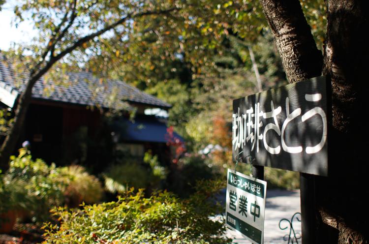 庭に植えられた植物や自然の木々に囲まれたお店