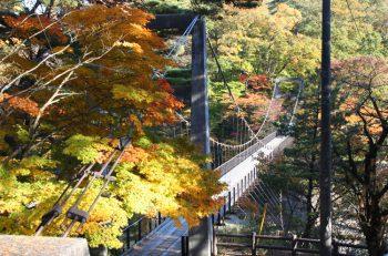【おでかけドライブ】関川村に行って、美しい紅葉を眺めよう!