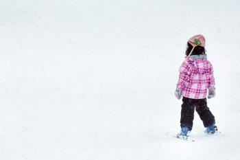新潟県スキー場のおトク情報 探してみました【その3 下越・磐越道・日東道沿線編】