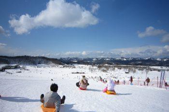 越後丘陵公園が白銀の世界に大変身。おもいっきりはしゃごう!