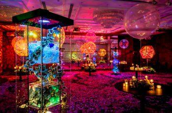 結婚式場が幻想的なアートミュージアムに変身!