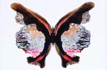 芸術家たちが作品に取り入れた美術の「偶然」。その魅力を探ろう。