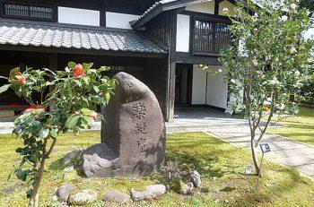 【上越市】雪椿の開花時期に合わせた祭典