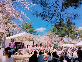 【小千谷市】桜の名所、船岡公園で開催される春のお祭り
