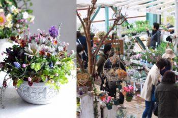 花に囲まれた空間で行なわれる春イベント。食べて遊んで花を見る2日間|五泉市