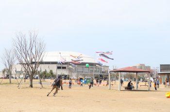 【新潟市】こいのぼりが大空に舞う姿は圧巻。多彩なイベントもあり|東区・寺山公園