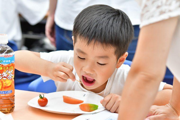 話を聞くだけでなく、食べたり、触ったりしながら、体験を通じて野菜や果物と触れ合います