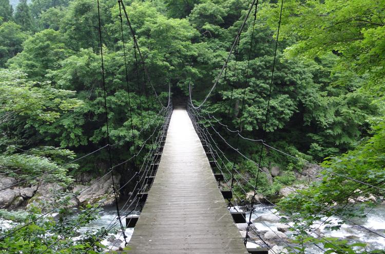 こちらが見倉橋。とても美しいつり橋です  写真提供:津南町観光協会