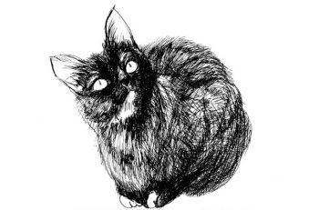 絵画から小物まで猫をモチーフとした作品展を加茂市で開催