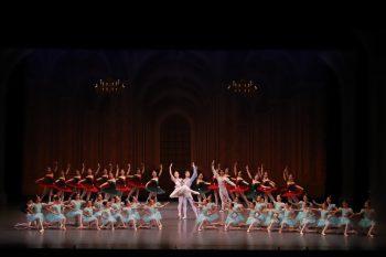 上越、柏崎、長岡、新潟で開催。さまざまなダンスが楽しめる毎年夏恒例のフェスティバル