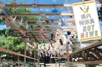 五泉八幡宮に約2,800個もの風鈴が飾られます!【県内特派員HOT NEWS・五泉特派員/宮井 彩さん】