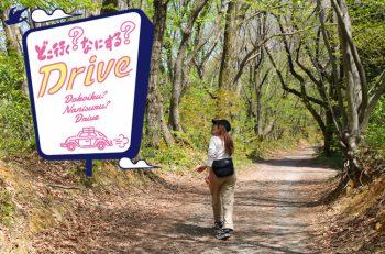【おでかけドライブ】田上町に行ってトレッキングを楽しもう!