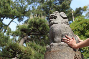 【新潟市下町開運旅】ユニーク神社をめぐる、お気軽開運街歩き