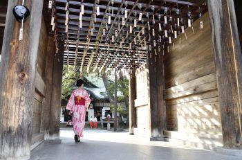 運気アップ! 色鮮やかな風鈴の音色が白山神社に響きわたります