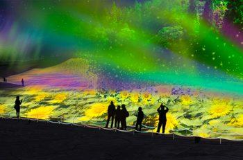 妙高山と満天の星の間に日本初となる光の絶景空間が登場!
