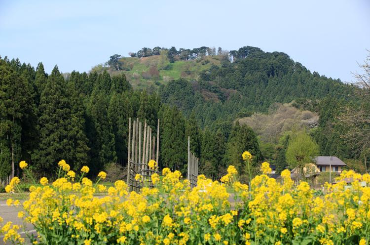 標高180メートルにある本丸跡からは、日本海や頸城平野、それを取り巻く山並みを一望できる