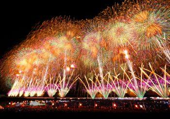 15回目を迎えるフェニックス、今年はひと味違う!|長岡市