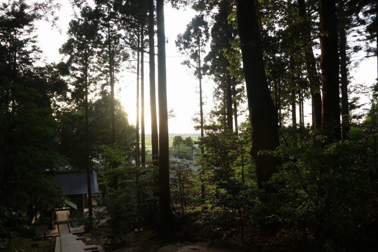 参拝を終えて下を見ると新潟平野に陽がさしてました