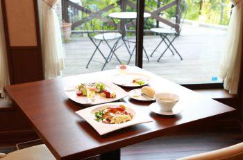 きれいな庭を眺めながら味わうお手軽フレンチコース|新発田市