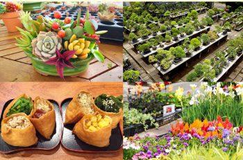 ランチボックスは必食! 秋の園芸シーズンに開かれる17日間の大イベント