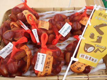 キノコ、栗、サツマイモ…。秋のおいしいものが大集合!